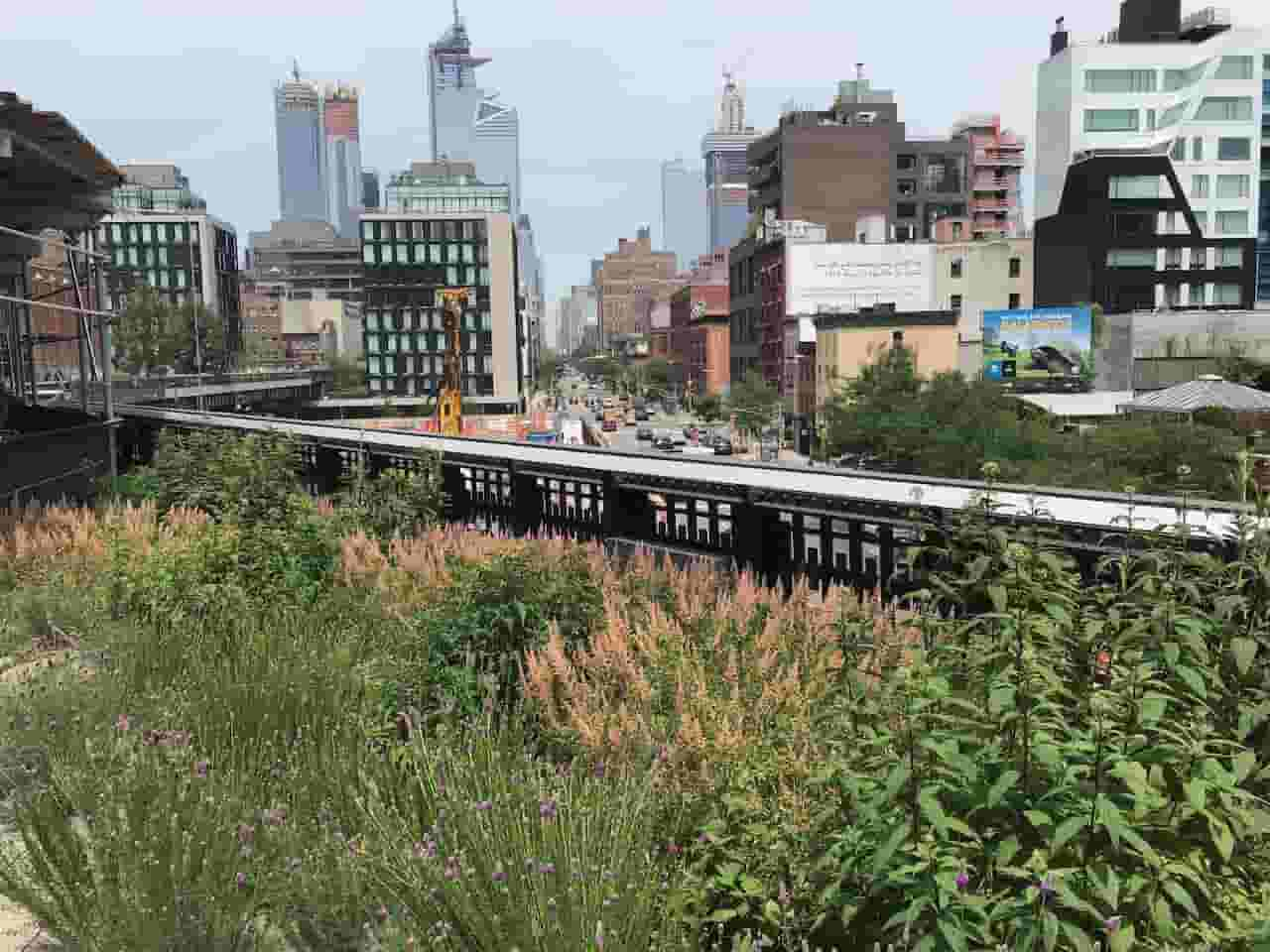 A lovely view of Manhattan from the High Line park